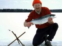 Nice Salmon
