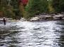 Salmon Rivers