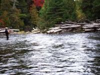 Fish-On at Caucomgomoc Stream