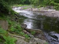 Upper Sebios Stream
