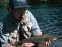 Sandy River Brown Trout