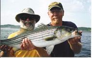 Maine Striped Bass