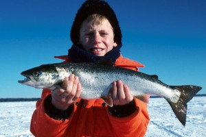 Opening Day Salmon